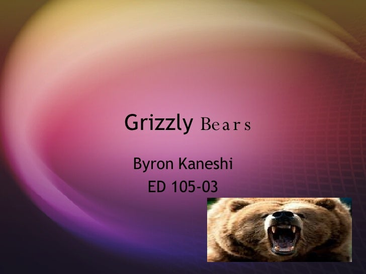 Grizzly  Bears Byron Kaneshi ED 105-03