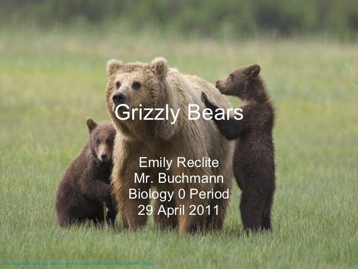 Grizzly Bears Emily Reclite Mr. Buchmann Biology 0 Period 29 April 2011 http://media-3.web.britannica.com/eb-media/87/1024...