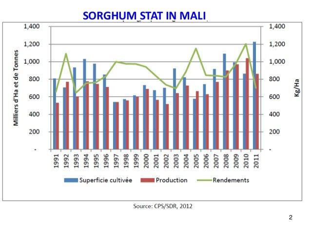 SORGHUM STAT IN MALI 2