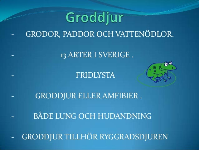 -  GRODOR, PADDOR OCH VATTENÖDLOR.  -  13 ARTER I SVERIGE .  -  FRIDLYSTA  -  GRODDJUR ELLER AMFIBIER .  -  BÅDE LUNG OCH ...