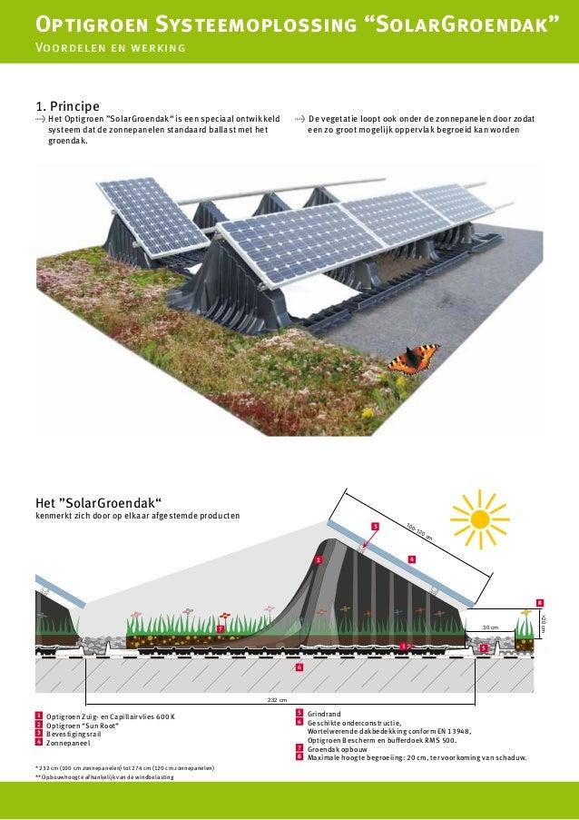 Duurzame Combinatie Van Groendaken En Zonne Energie