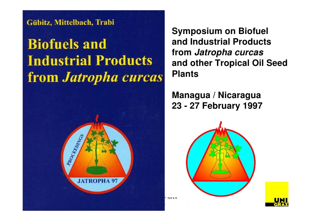 research papers on jatropha curcas This research work describes the characteristic of jatropha biodiesel the attempt was made to discover the jatropha existence and cultivation in pakistan the characteristic of jatropha oil and jatropha biodiesel was determined and compared to petroleum diesel the jatropha oil yield was found 3617% with free fatty.