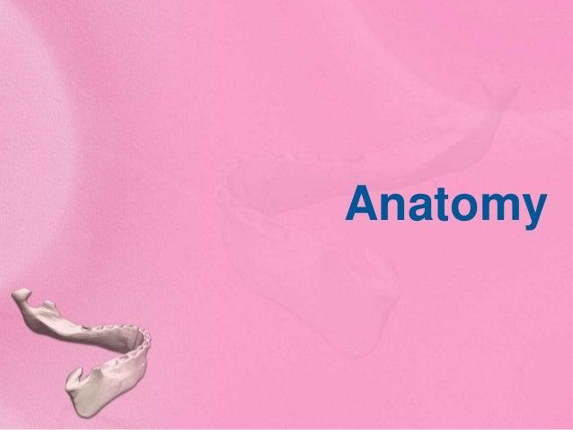 Grossing of mandibulectomy specimen - Dr Pranav, MGIMS Slide 3