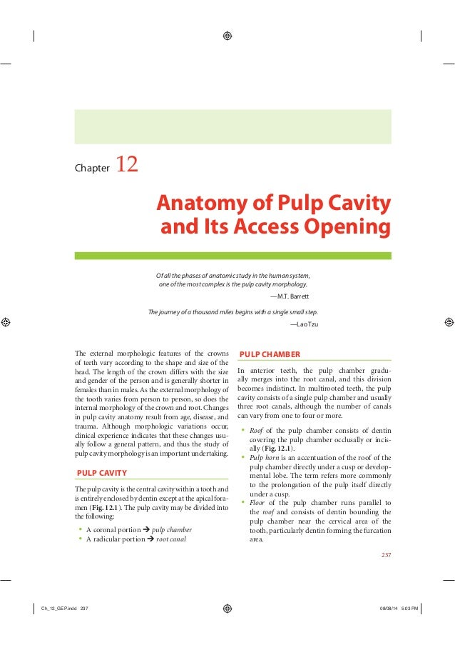 Pulp Chamber Roof Pulpotomy Access Technique Ppt Video