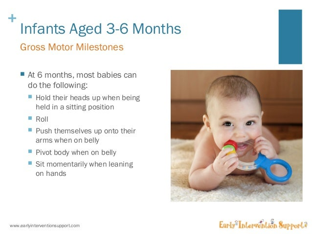 developmental milestones 3 6 months