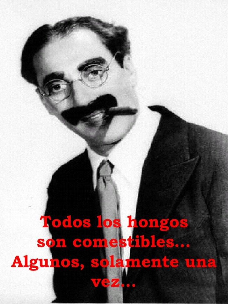 Groucho Slide 3
