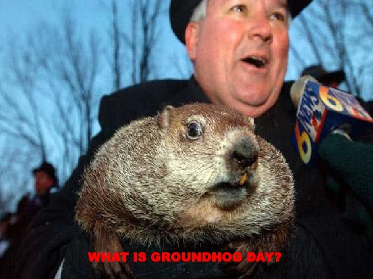 WHAT IS GROUNDHOG DAY?<br />