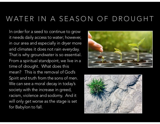 WAT E R I N A S E A S O N O F D R O U G H T In order for a seed to continue to grow it needs daily access to water; howeve...
