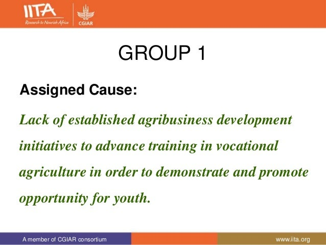 A member of CGIAR consortium www.iita.org GROUP 1 Assigned Cause: Lack of established agribusiness development initiatives...