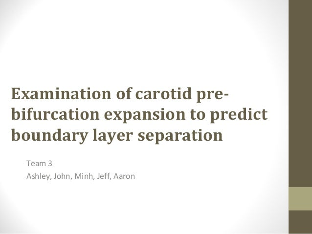 Examination of carotid pre- bifurcation expansion to predict boundary layer separation Team 3 Ashley, John, Minh, Jeff, Aa...