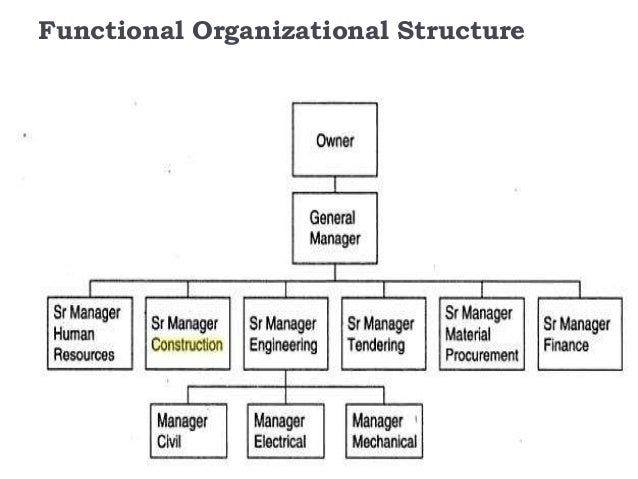 function 8 functional organizational structure disadvantages