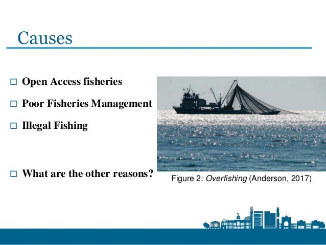 causes of illegal fishing
