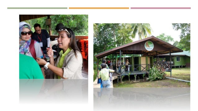 empowerment of local communities for sustainable tourism essay A critical aspect of promoting gender equality is the empowerment of women,   ecotourism can empower local communities by giving them a sense of pride in.