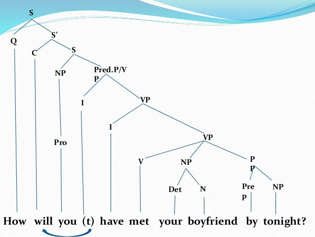 Tree diagram question sentence diy enthusiasts wiring diagrams tree diagrams wh question rh slideshare net grammar tree diagram tree diagram sentence examples ccuart Gallery
