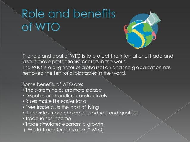 What are the pros and cons of protectionism?
