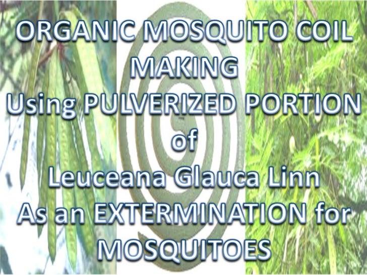 tortoise mosquito coil