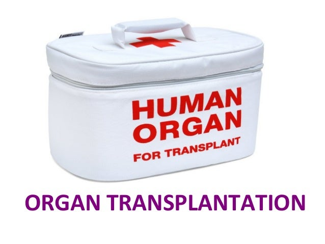 Pro/con ethics debate: is nonheart-beating organ donation ethically acceptable?