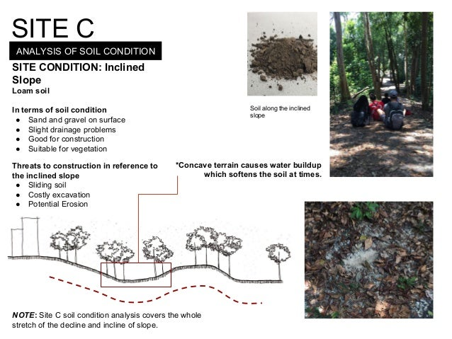 ANALYSIS OF SOIL CONDITION SITE C SITE CONDITION: Inclined Slope Loam soil In terms of soil condition ● Sand and gravel on...