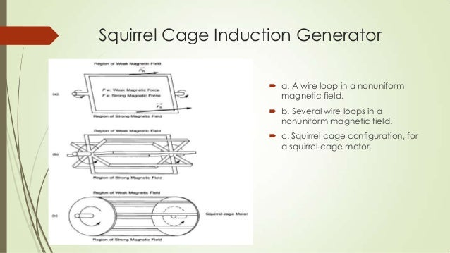 Wind turbine generators 17 squirrel cage induction generator cheapraybanclubmaster Choice Image