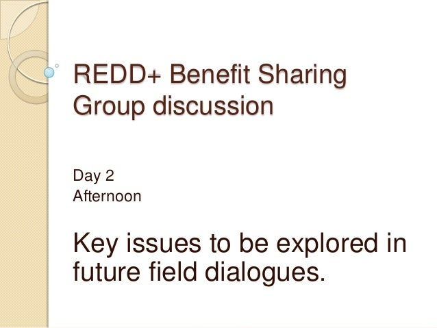 REDD+ Benefit SharingGroup discussionDay 2AfternoonKey issues to be explored infuture field dialogues.