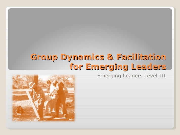 Group Dynamics & Facilitation for Emerging Leaders Emerging Leaders Level III