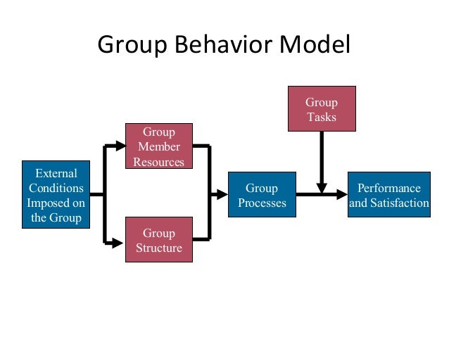 components of group behaviour model Components of group behaviour model custom paper academic writing service.
