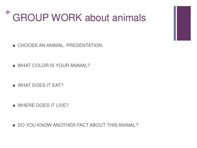 + GROUP WORK about animals  CHOOSE AN ANIMAL. PRESENTATION.  WHAT COLOR IS YOUR ANIMAL?  WHAT DOES IT EAT?  WHERE DOES...
