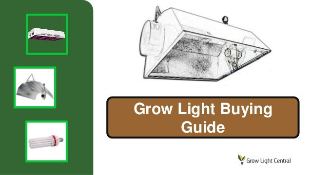 Grow Light Buying Guide
