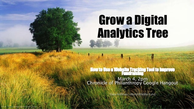 Grow a Digital Analytics Tree How to Use a Website Tracking Tool to Improve Fundraising March 4, 2pm Chronicle of Philanth...