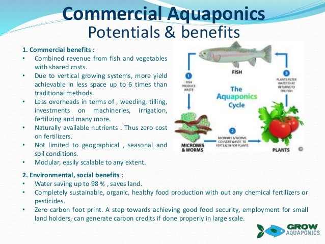 Grow aquaponics funding