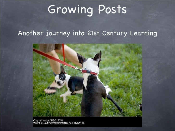Growing Posts Another journey into 21st Century Learning