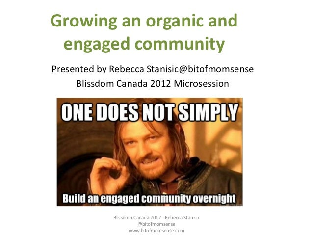 Growing an organic and engaged communityPresented by Rebecca Stanisic@bitofmomsense     Blissdom Canada 2012 Microsession ...