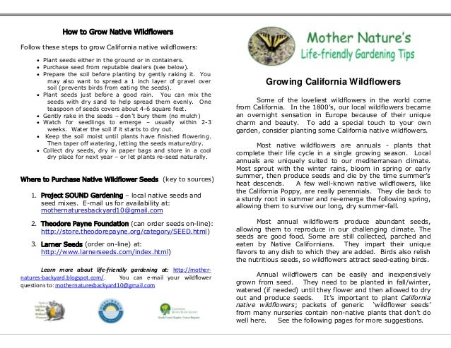 How to Grow Native WildflowersFollow these steps to grow California native wildflowers:      Plant seeds either in the gr...
