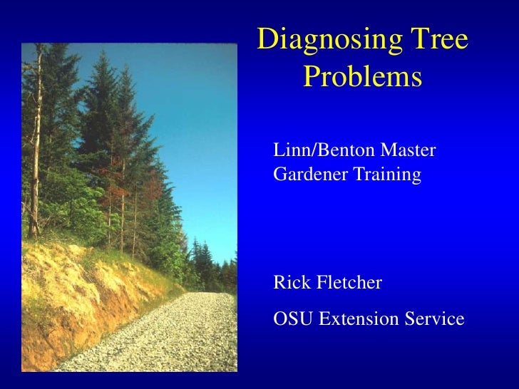 Diagnosing Tree Problems<br />Linn/Benton Master Gardener Training<br />Rick Fletcher<br />OSU Extension Service<br />