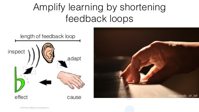 © 2015 Scrum WithStyle scrumwithstyle.com Amplify learning by shortening feedback loops Image credit: sir_leif length of f...
