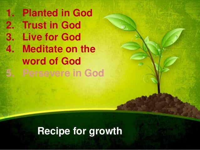 1. 2. 3. 4.  Planted in God Trust in God Live for God Meditate on the word of God 5. Persevere in God  Recipe for growth