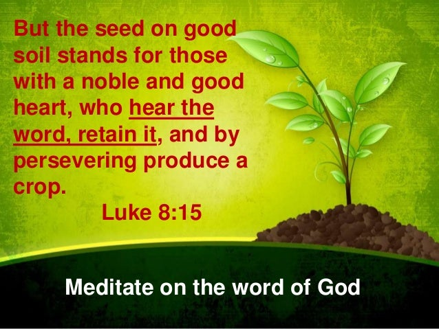 But the seed on good soil stands for those with a noble and good heart, who hear the word, retain it, and by persevering p...