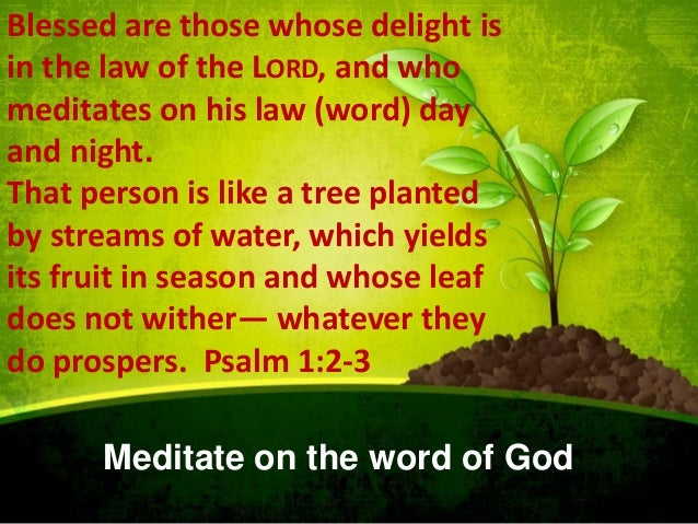 Blessed are those whose delight is in the law of the LORD, and who meditates on his law (word) day and night. That person ...