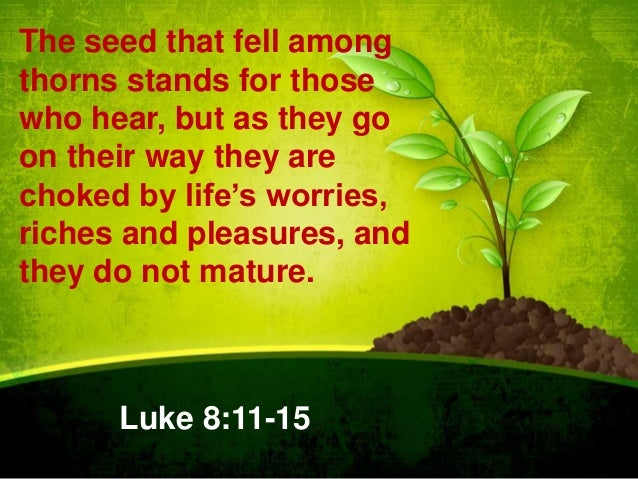 The seed that fell among thorns stands for those who hear, but as they go on their way they are choked by life's worries, ...