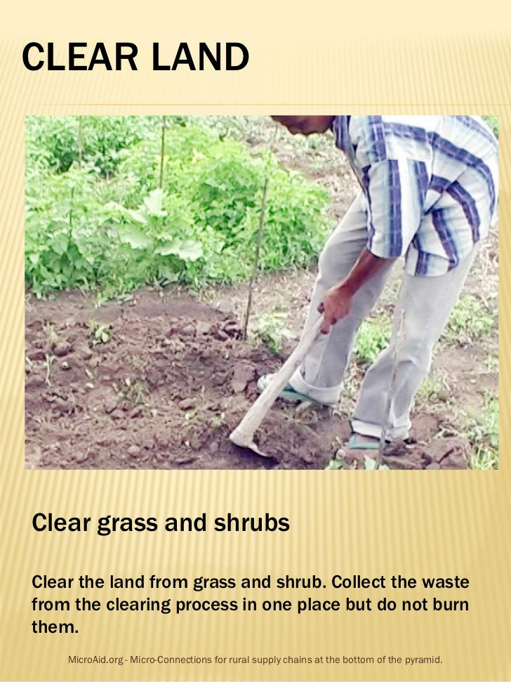 CLEAR LANDClear grass and shrubsClear the land from grass and shrub. Collect the wastefrom the clearing process in one pla...
