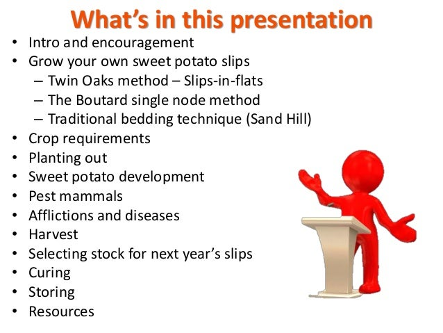 Growing sweet potatoes from start to finish 2020 Pam Dawling Slide 3