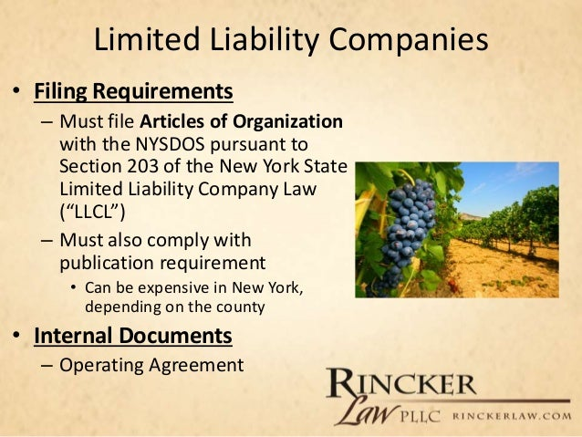 business entities and liabilities repaired Neither the founders nor the board are liable for the corporate obligations a self- governing corporate entity that is engaged in business activities must be.