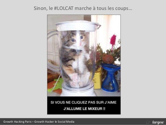 Sinon, le #LOLCAT marche à tous les coups… Growth Hacking Paris – Growth Hacker le Social Media