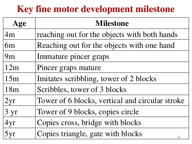 Fine motor development milestones 7 years for Motor and social development of a 7 year old