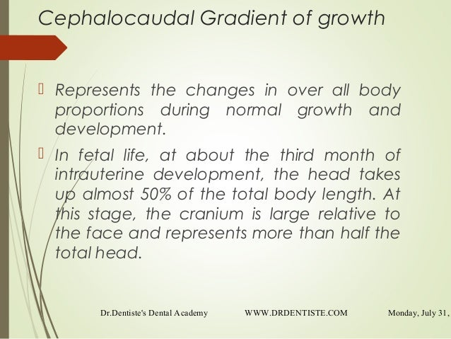 what does cephalocaudal mean