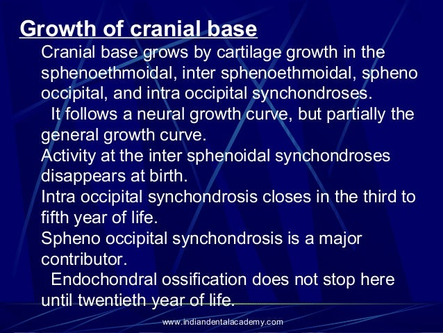 Growth Development Of Cranium Band of immature proliferating cartilage cells. growth development of cranium