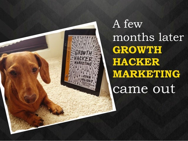 A few  months later  GROWTH  HACKER  MARKETING  came out