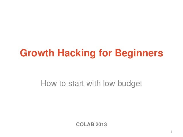 How to start with low budget 1 Growth Hacking for Beginners COLAB 2013