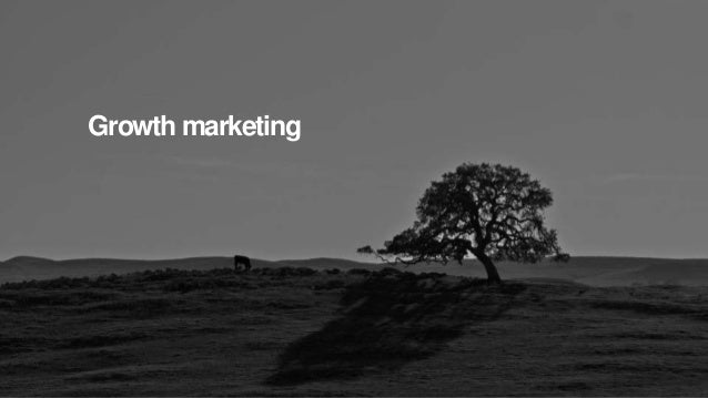 Holler Australia. Big reactions, Simple Interactions. Growth marketing August 2015