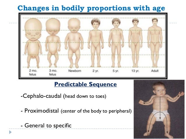 the bodily changes in the different stages of human life Hiv stages disease progression hiv treatment prevention conclusion   human immunodeficiency virus (hiv) is a virus that causes the condition  hiv  destroys these cells, making it harder for your body to fight off other infections   for hiv and your hiv levels are low, you can live a normal to nearly normal life  span.